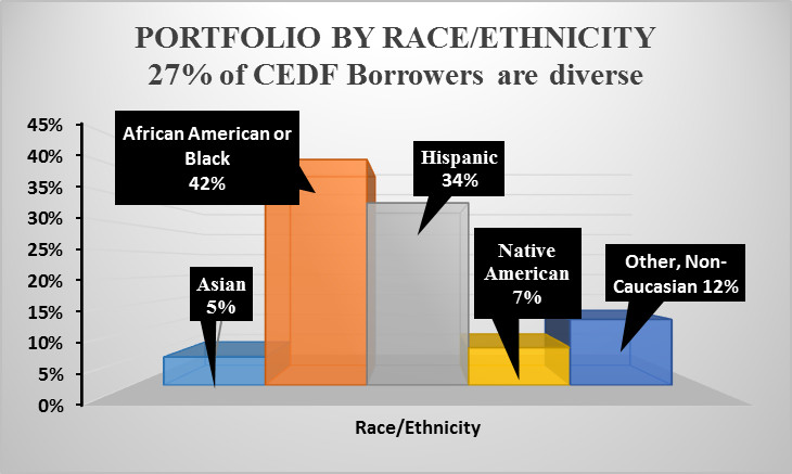 Portfolio by Race Ethnicity